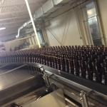 lots of bottles at the brewery