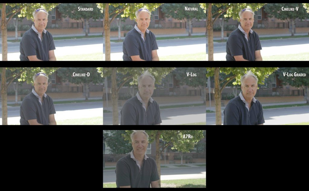 GH4 Compare Profiles V Log and others