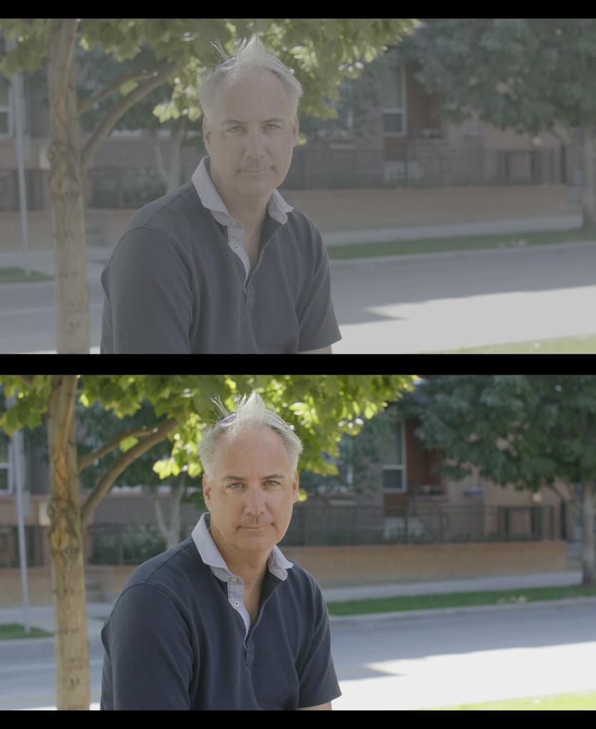 Vlog Comparison