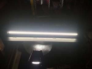 bladelight flolight