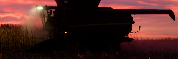 early morning combine